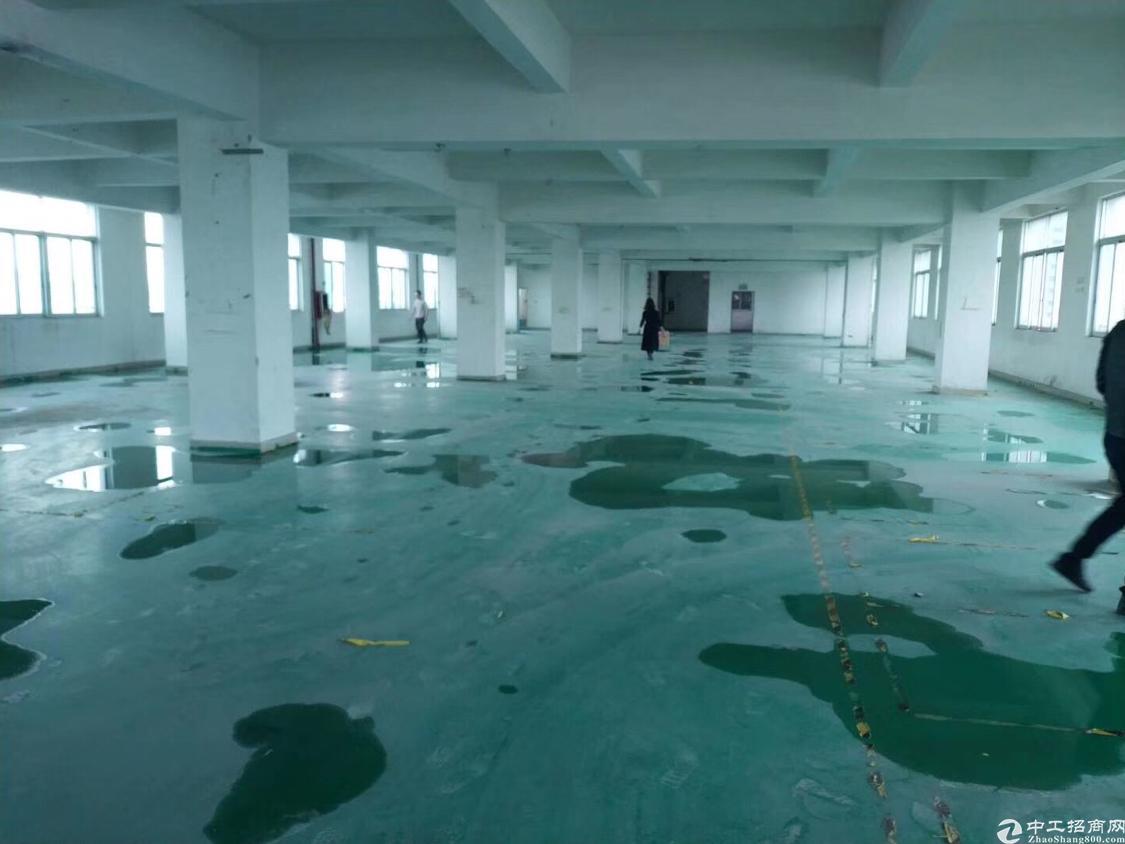 国有证独院厂房6800平方米出售中堂厂房