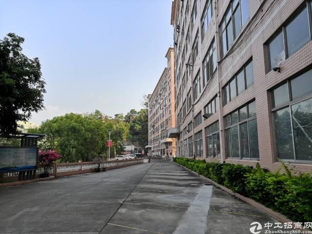 红本厂房一到三层8100平方实际面积出租