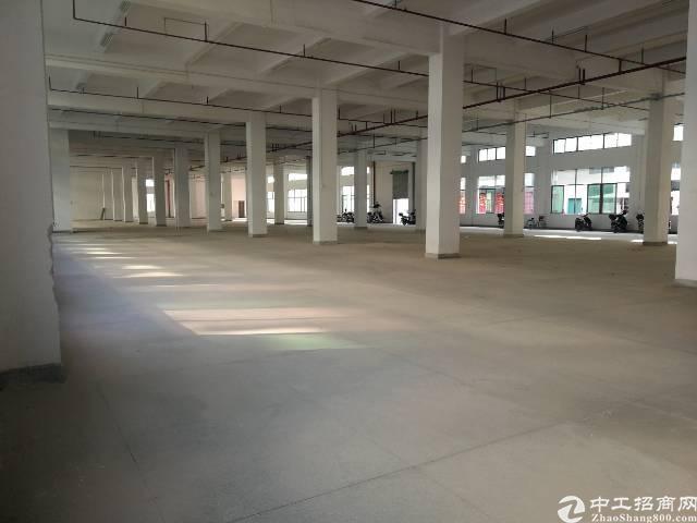博罗杨村新出工1业园10万平标准厂房出租