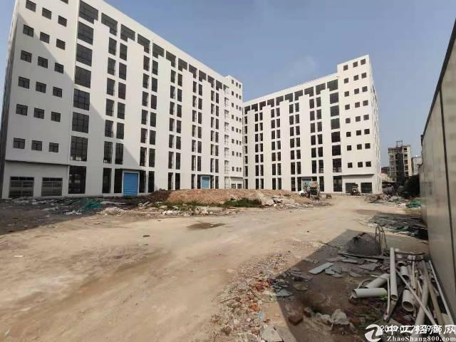 石排镇明包厂房,独院三栋厂房46000平方,每栋八层