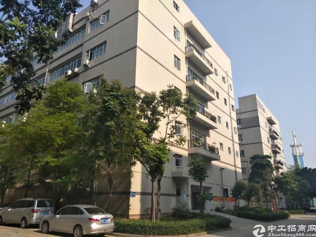 沙井镇共和二楼800平方带装修厂房出租