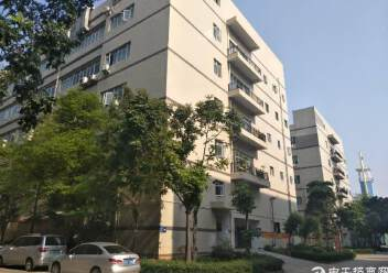 沙井镇共和二楼1200平方带装修厂房出租图片5