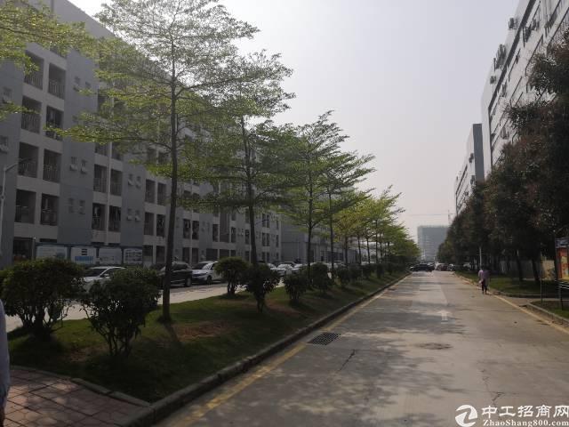 西丽百旺信科技园1200-7408平方厂房出租