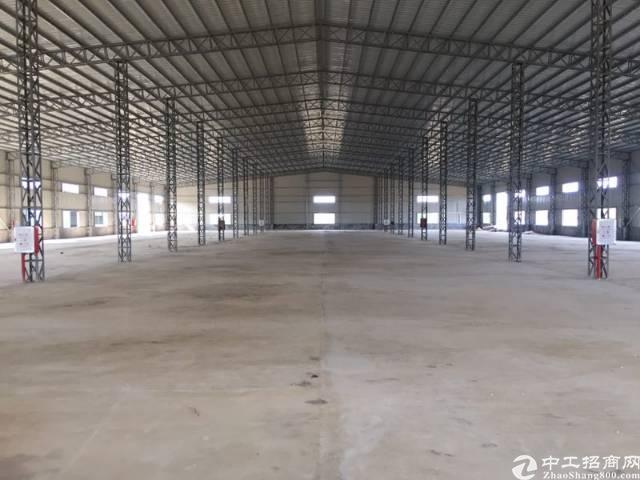全新5577㎡钢构独院