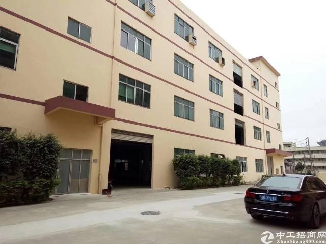 平湖华南城附近新出一楼1800平方标准厂房招租