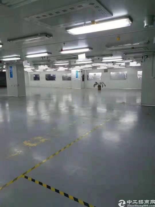 广州南沙榄核标准厂房环境优美9000平方证件齐全