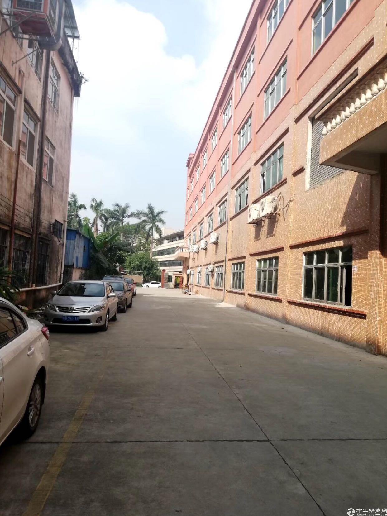 石排工业区,分租一楼,四楼厂房出租,有现成水电行车。