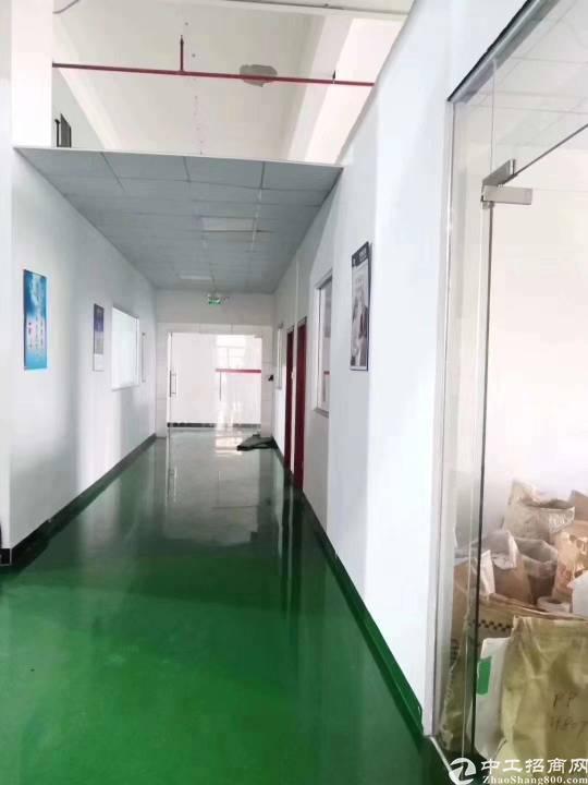 东莞长安镇新出楼上带豪华精装修厂房出租-图2