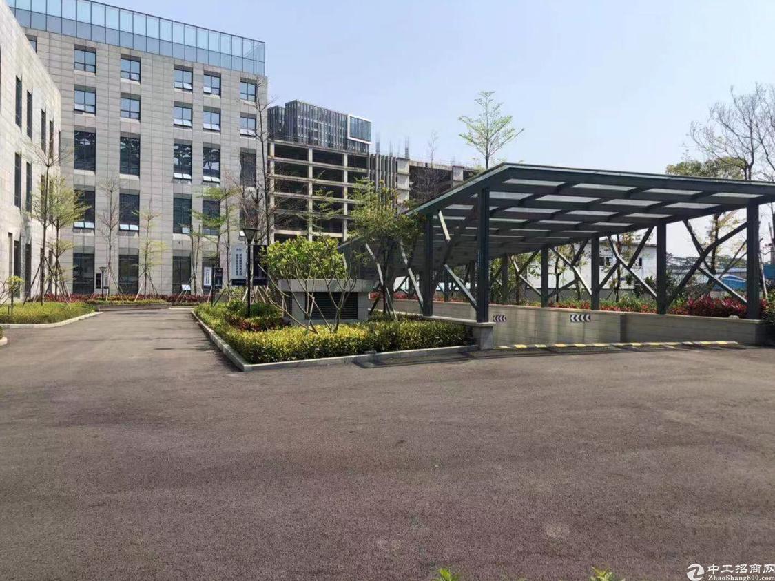 东莞松山湖全新甲级写字楼跳楼价35元每平