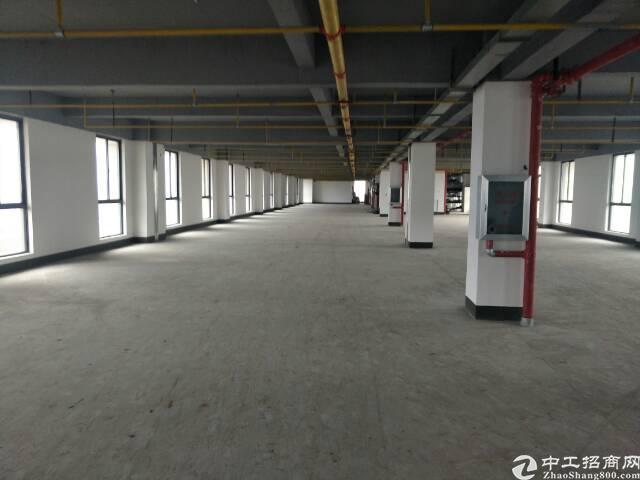东西湖13支沟标准厂房947平米出售,可分层办证。