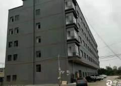 惠东县白花镇中心写字楼出租