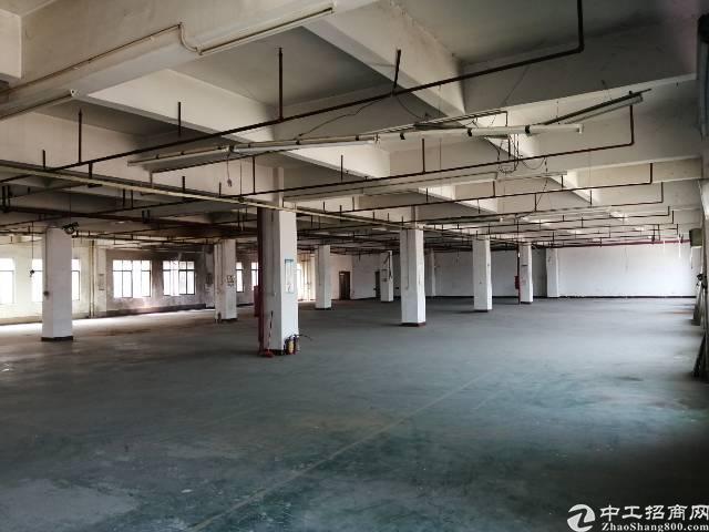 惠州,高速路口一公里,原房东,无公摊