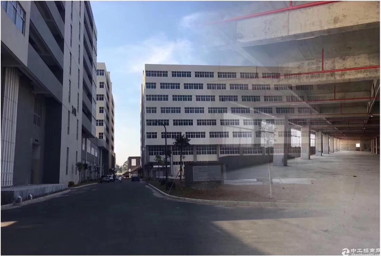 东莞开发商厂房出售,全新小面积国有证五十年产权