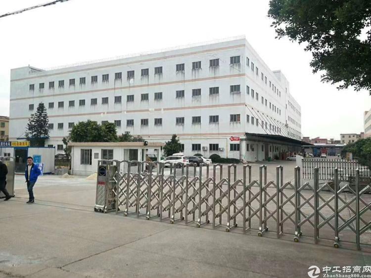 广州南沙区9000平方标准厂房出租,5吨电梯,电大,可分租