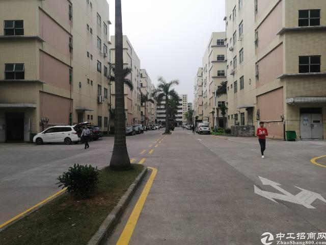 公明镇新出厂房3楼800平方带精装带无尘车间出租-图3
