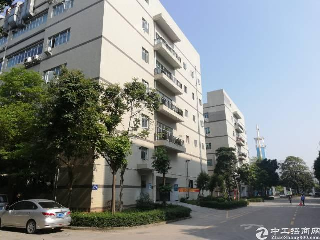 沙井新桥高速路口新出楼上厂房800平,带豪华装修办公室,