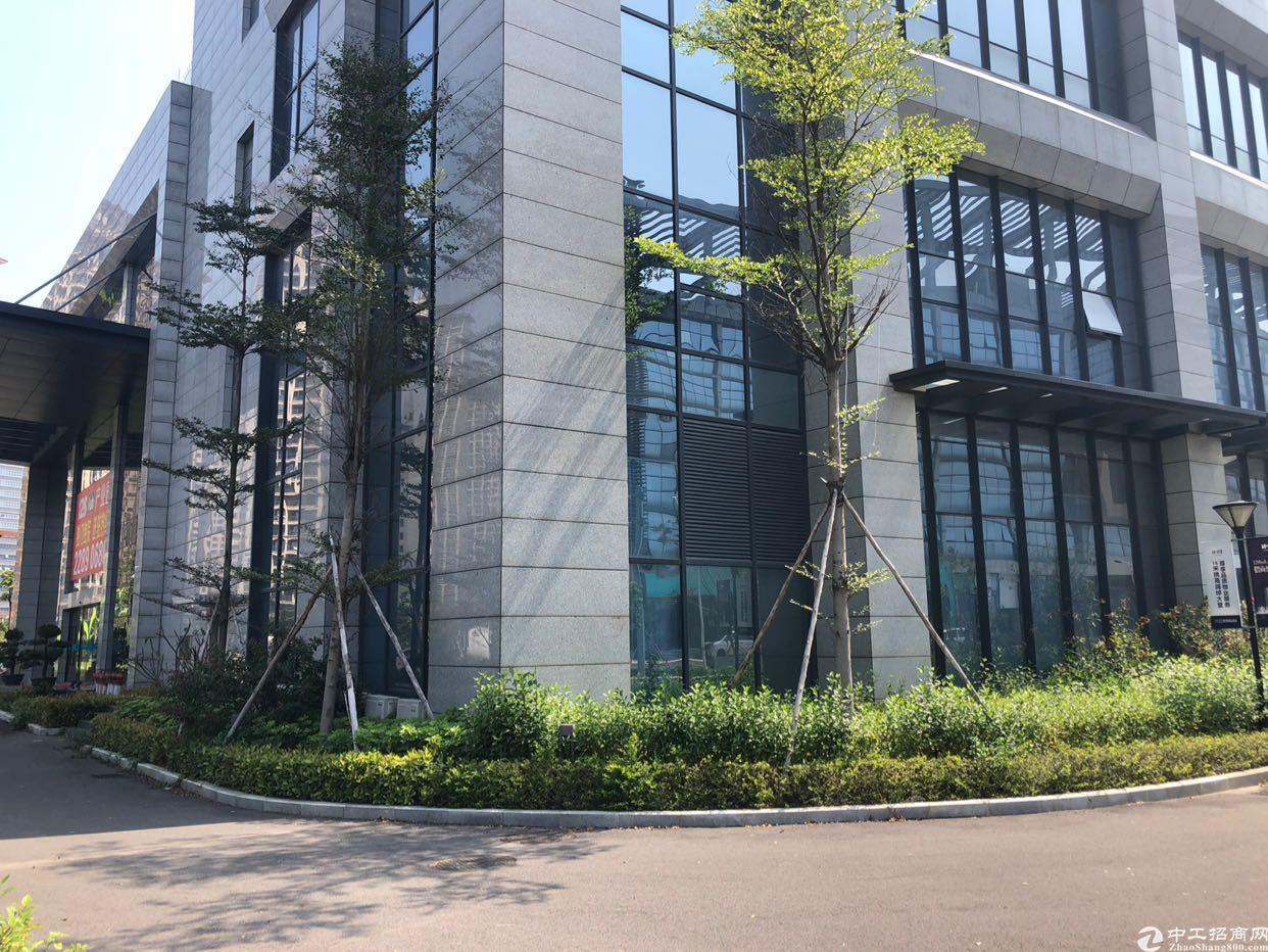 大朗松山湖高大上贸易电商写字楼全新办公室招租