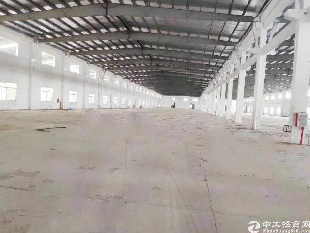惠城区马安镇单一层独院钢构15000平方出租