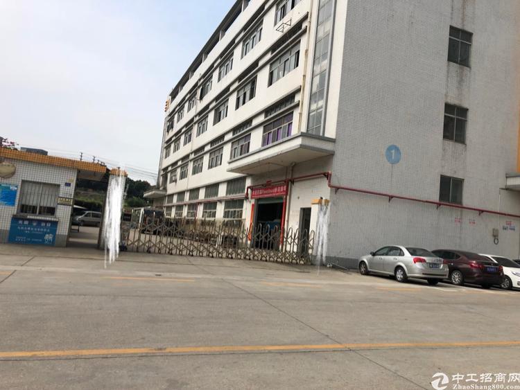 公明南光高速出口独门独院8500平米出租-图3