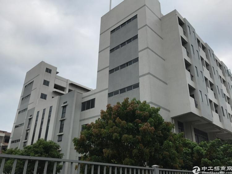 广州黄埔开发区30亩建筑45000方不动产权厂房