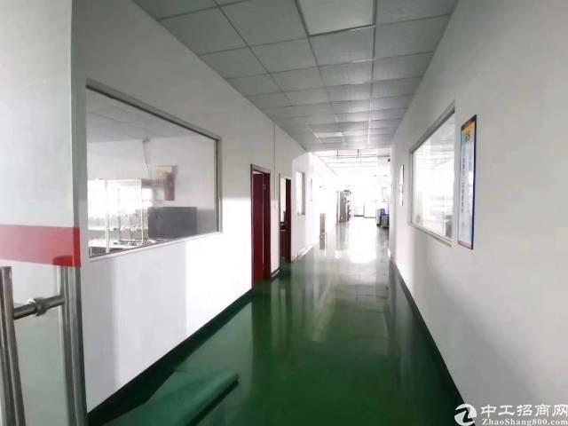 东莞长安镇新出楼上带豪华精装修厂房出租-图4