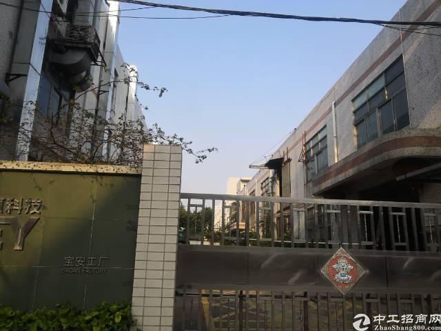 福永新出原房东厂房独门独院,2500平无公摊,交通非常好