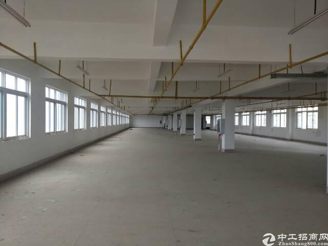 黄陂前川单层1751平米厂房出售