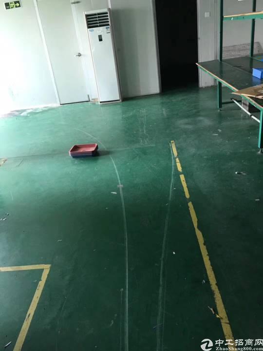 沙井镇共和二楼1200平方带装修厂房出租-图3