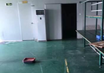 沙井镇共和二楼1200平方带装修厂房出租图片4