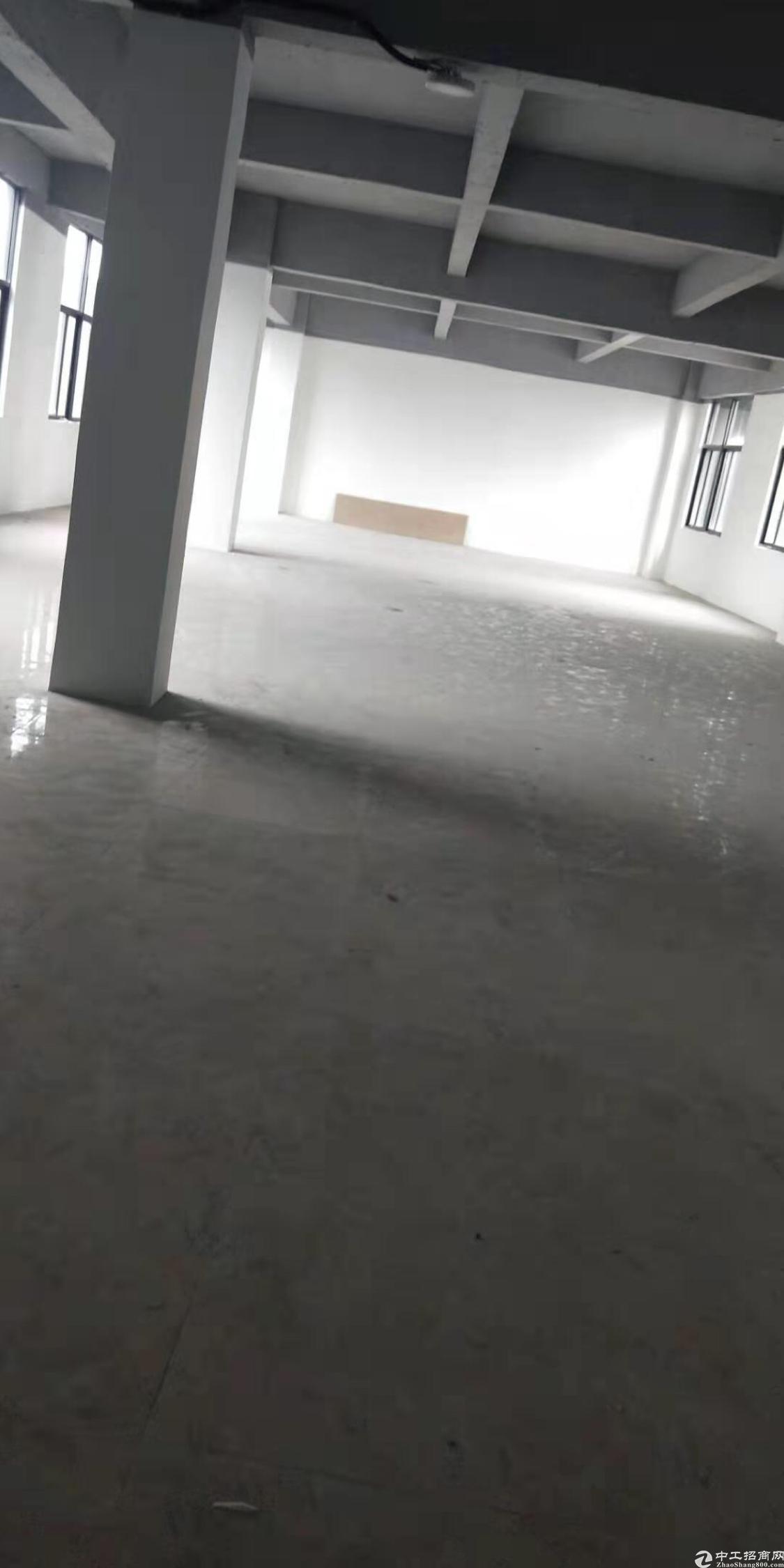 黄埔区黄埔东路丰乐北路附近写字楼办公室招租,3000平