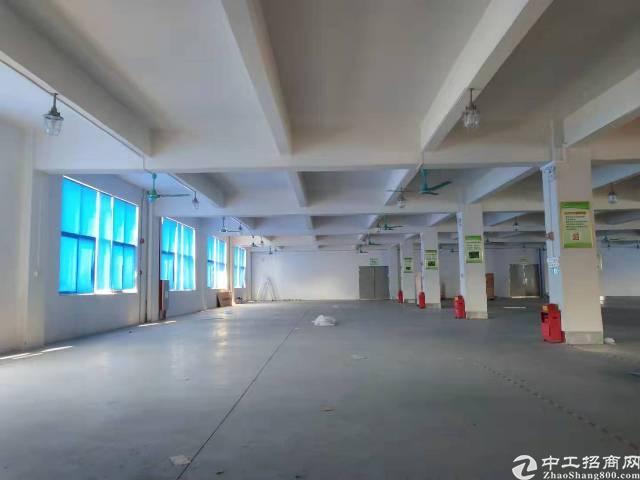 石碁市莲路边上超靓园区新出楼上实际面积出租2000平