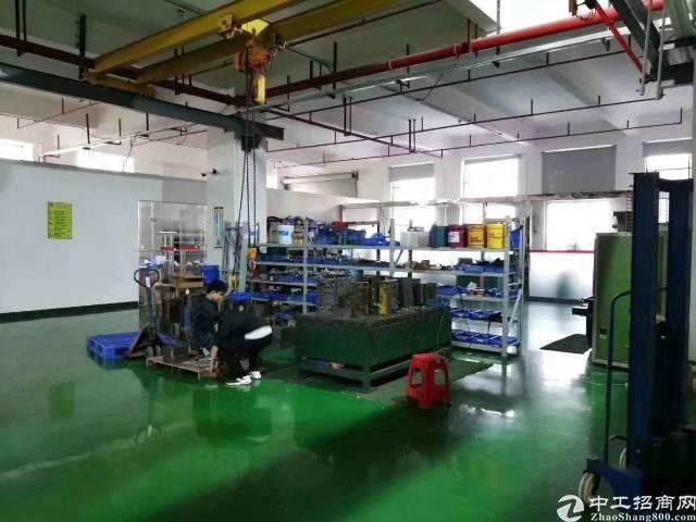 东莞长安镇新出楼上带豪华精装修厂房出租-图5