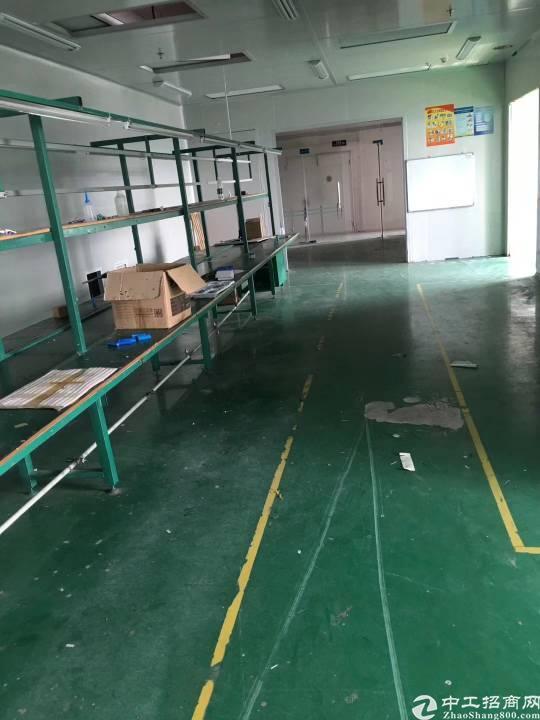 沙井镇共和二楼1200平方带装修厂房出租-图6