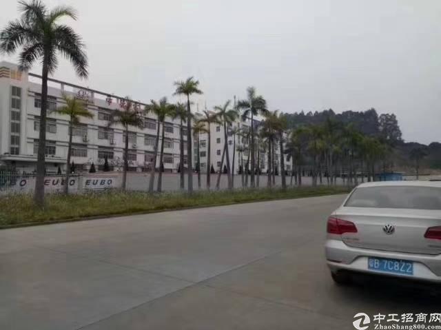 新塘镇原房东独门独院标准厂房出租