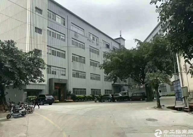 公明田寮厂房一二楼6000平方按实际面积出租