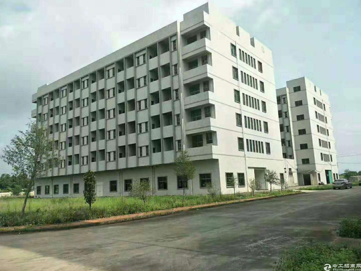 惠州新出标准厂房12000平方米