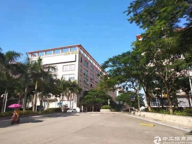 黄埔开发东区万达广场附近大型创意园3000平方出租