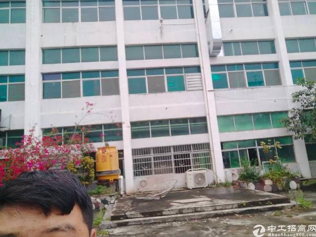 罗阳县义和镇新出原房东独院三层标准楼房3500平方租