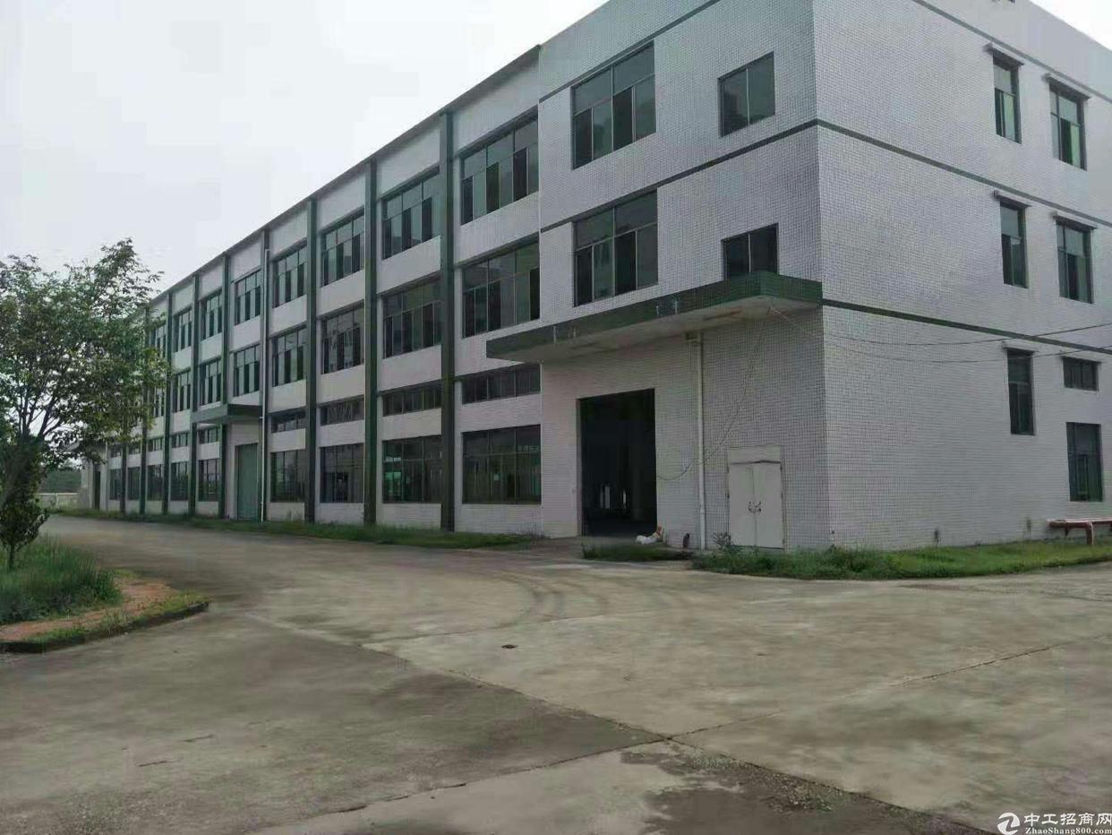 惠州新出标准厂房5790平方米厂房