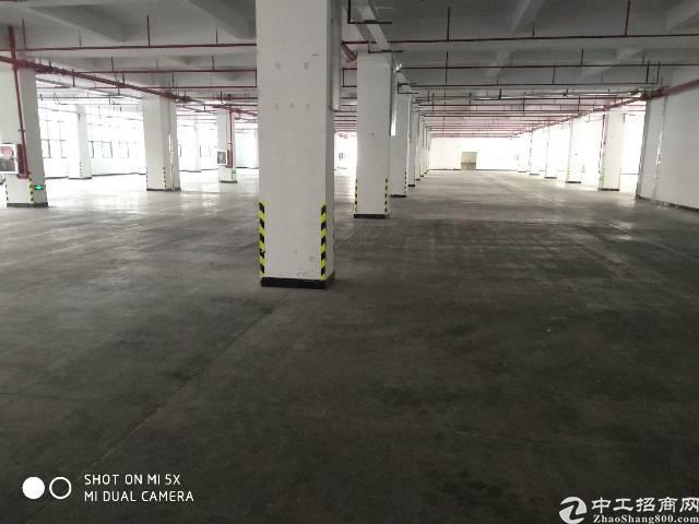 仲恺高新区大型工业园区招租