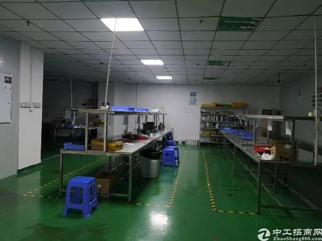 福永沿江高速附近新出1000平带装免转让费厂房-图3
