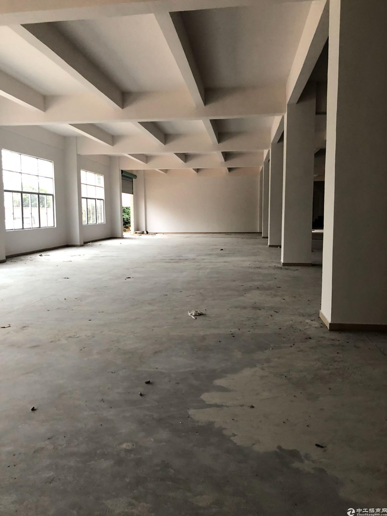 虎门镇树田358省道旁全新独院厂房,大面积可分租,可办环评-图6