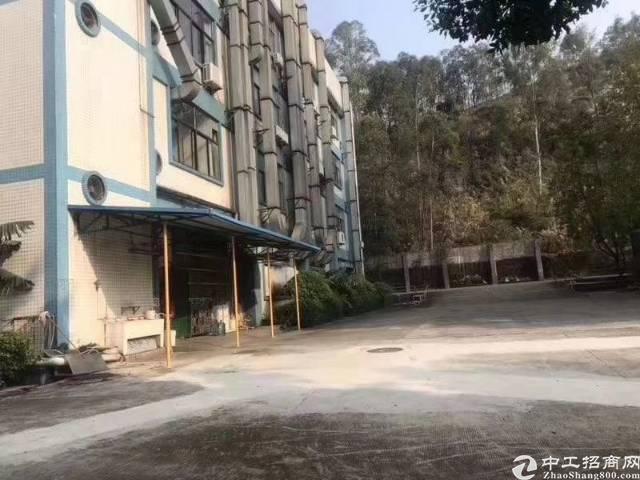 松岗山门新出独院3900平方厂房出租-图4
