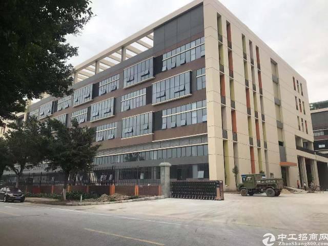 南沙12万平米全新厂房出租1000平米起分租-图3