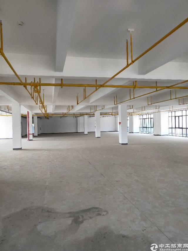 武汉市江东湖高新光谷二路新建厂房出租,证件齐全大小可分租