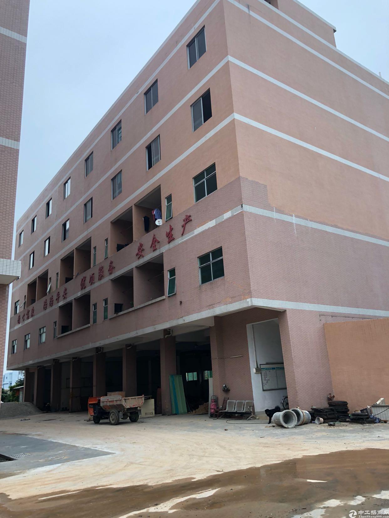 虎门镇树田358省道旁全新独院厂房,大面积可分租,可办环评-图4