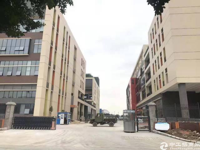 南沙12万平米全新厂房出租1000平米起分租