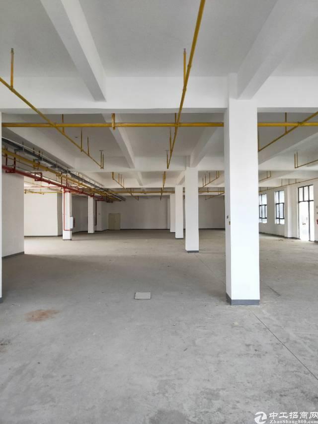 武汉市江东湖高新光谷二路新建厂房出租,证件齐全大小可分租-图2