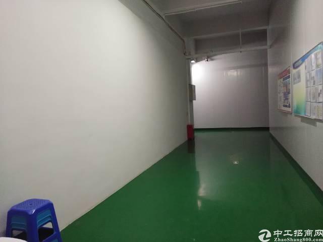 塘厦镇高大尚工业区楼上带装修3900平方出租-图2