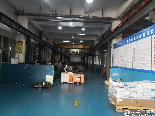 园洲镇一楼标准厂房招租-图2